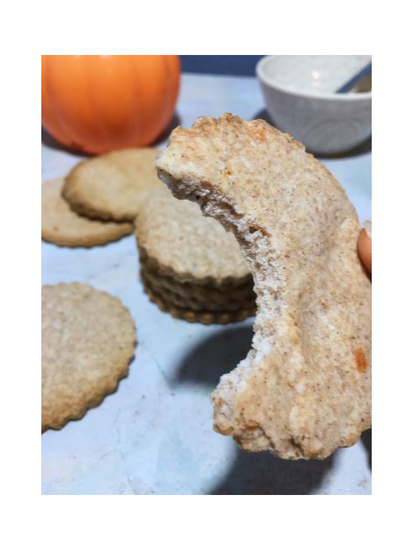 bite shot of pumpkin spiced cookie